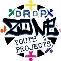 Dropzone Youth Project